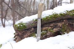 Sharp hunting knife royalty free stock images
