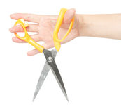 Sharp new scissors Royalty Free Stock Photography