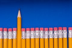 The Sharp One - on blue. A sharp pencil amid a number of pencils eraser end up. Concept of a sharp or different individual or object amid many similar objects royalty free stock images