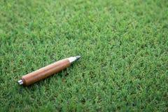Sharp pencil on green field Stock Image