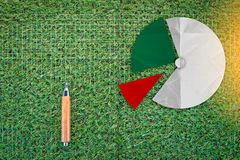 Sharp pencil and pie chart on green grass  texture background. Business analysis concept Stock Image