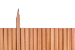Sharp pencil stand out of other pencils stock images