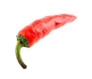 Sharp pepper Stock Photography