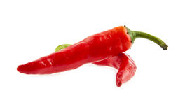 Sharp pepper Royalty Free Stock Image