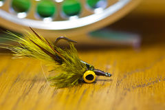 Sharp looking Fly. Sharp pointed hook for Fly Fishing for Carp and Trout Stock Photography