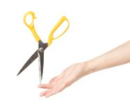 Sharp scissors Stock Images