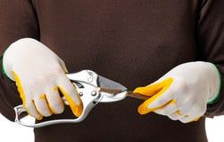 Sharp scissors Stock Images