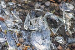 Free Sharp Shards Of A Broken Glass Bottle On The Ground With Sharp Blades Are Dangerous From Vandalism And Drunk People Stock Photography - 220274582