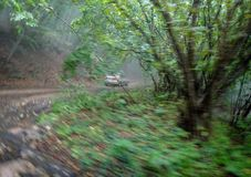 Dangerous bend. A sharp turn on the car in the rally on the forest road, speed, emotion, risk, excitement royalty free stock image