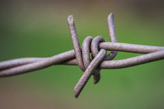 Sharp Twisted Barbed Fence Stock Photo