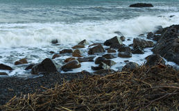 Sharped kamień w morza lub oceanu piany fala Fotografia Stock
