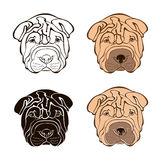 Sharpei face. Vector set. Hand-drawn  illustration. Sketch Royalty Free Stock Photo