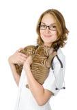 Sharpeihund för två valpar på händer på veterinären. Arkivbilder