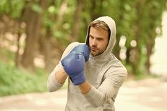 Sharpen his skill. Sportsman concentrated training boxing gloves. Athlete concentrated face sport gloves practice. Fighting skills nature background. Boxer stock photos