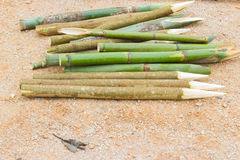 Sharpened bamboo sticks on the ground used for stabbing dracular Stock Photography