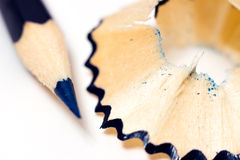 Sharpened blue pencil sharpener with shavings on a white background Stock Images