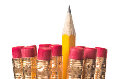 Sharpened pencil standing out. One sharpened pencil standing out from the bunch isolated on white Stock Photos
