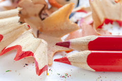 Sharpened red pencils and wood shavings Royalty Free Stock Image