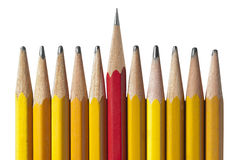 Sharpest Pencil in the Bunch, isolated Royalty Free Stock Photos