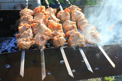 Shashlick laying on the grill closeup Royalty Free Stock Image