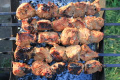 Shashlick laying on the grill closeup Stock Photography