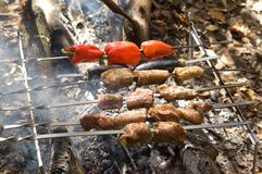 Shashlik. Cooking on the fire Royalty Free Stock Photo