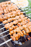 Shashlik. Meat grilled under charcoal (shashlik - national Caucasian dish Royalty Free Stock Photos