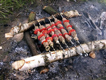 Shashlik Stock Photos