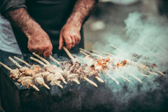 Shashlik Immagine Stock
