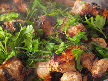 Shashlik Foto de Stock Royalty Free