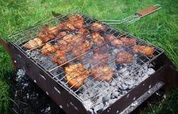 Shashlik apetitoso Fotos de Stock