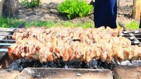 Shashlik appetitoso fuori Processo di cottura dello shashlik Pranzo del barbecue stock footage