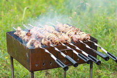 Shashlik Stock Photo