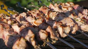 Shashlik barbecue grilling on skewers with smoke, dolly shot stock video