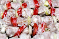 Shashlik closeup Stock Photography