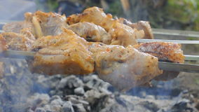 Shashlik cooking over an open fire on a picnic stock video footage