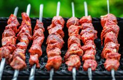 Shashlik da carne de porco imagem de stock