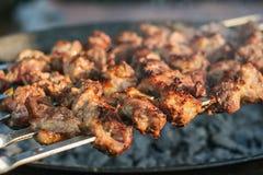 Shashlik de barbecue Photos libres de droits