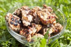 Shashlik de poulet Photo libre de droits