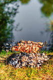 Shashlik della carne di maiale sugli spiedi Fotografie Stock