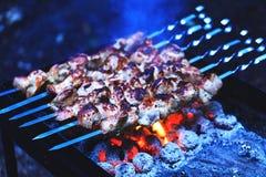 Shashlik eller köttkebab som in lagas mat över en öppen brand på kolen arkivbilder