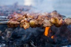 Shashlik eller shashlyk som f?rbereder sig p? ett grillfestgaller ?ver kol Grillade kuber av grisk?ttk?tt p? metallstekn?len Kött arkivfoto