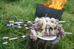 Shashlik and fire stock photo