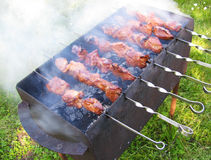 Shashlik on a grill Stock Images