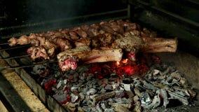 Shashlik grill over coals stock footage