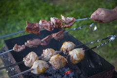 Shashlik on grill Stock Image