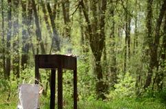 Shashlik i skogen royaltyfri bild