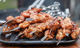 Shashlik Kebab Ψημένο στη σχάρα μαριναρισμένο κρέας με τα καρυκεύματα στοκ φωτογραφίες