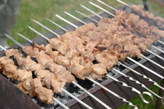 Shashlik kebabs Stock Photos