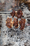Shashlik of lamb Royalty Free Stock Photo